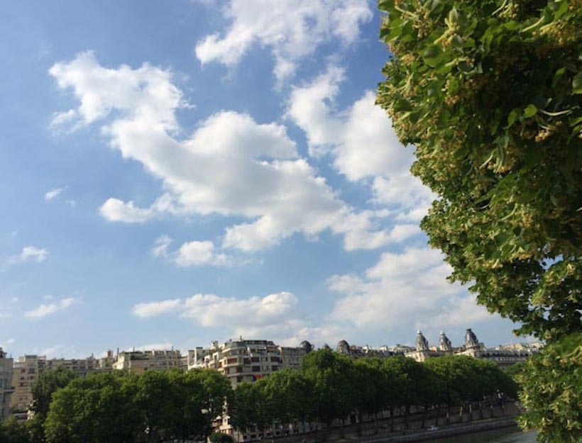 Beautiful Paris sky with familiar rooftops in the distance ~