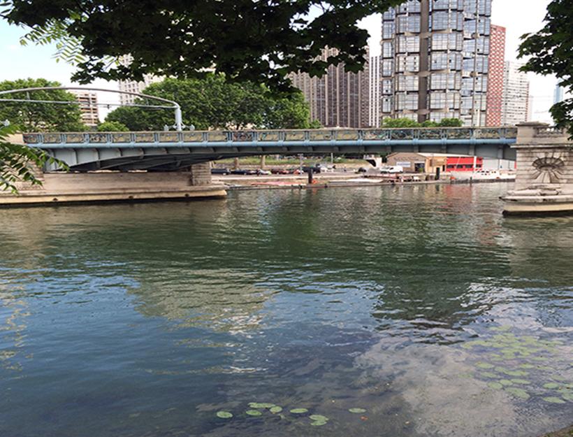 Paris Summertime Walk Along the Seine : )