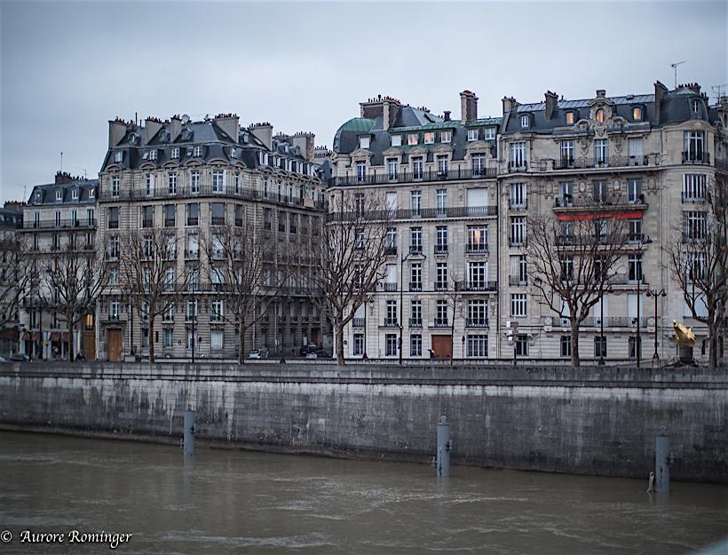 2016 Paris Winter Light