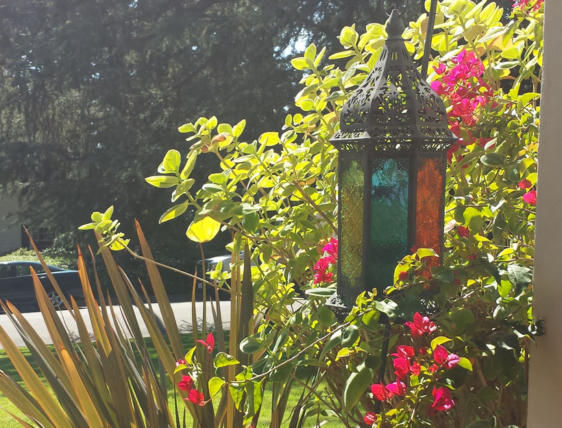 Hello Spring – A Poem by Linda (Peaches) Tavani