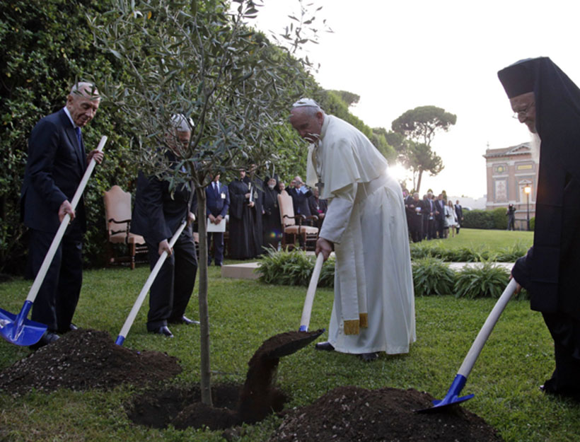 Pope Francis Plants a Tree