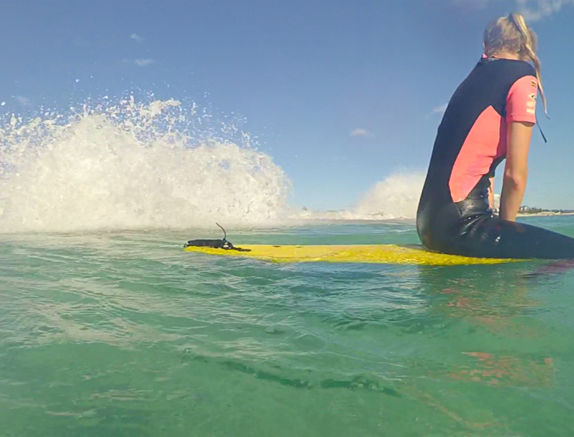 Surfing Attempts!