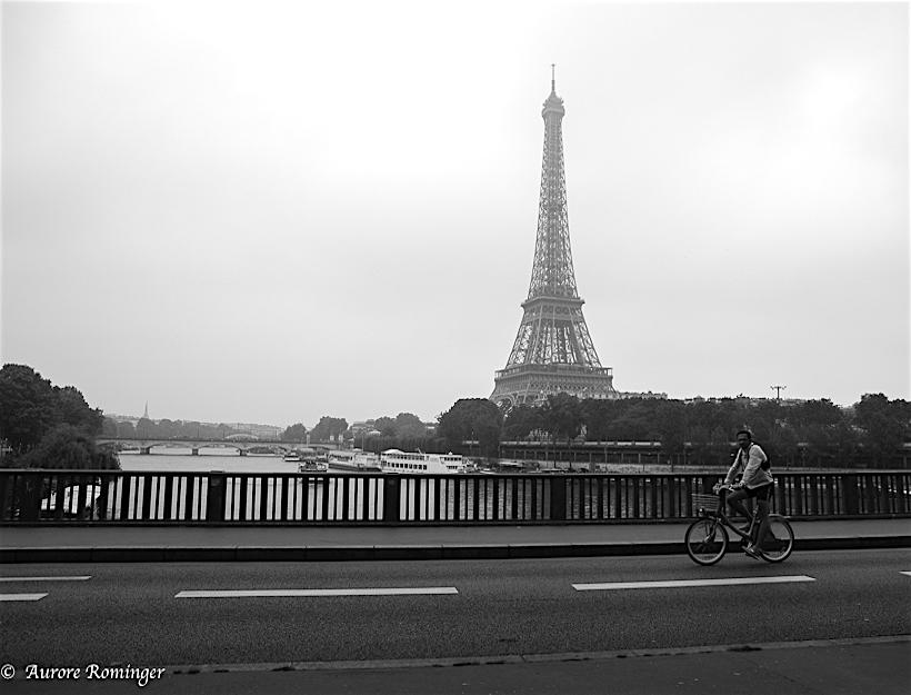 Paris fog, 29 mai Les fêtes des mères