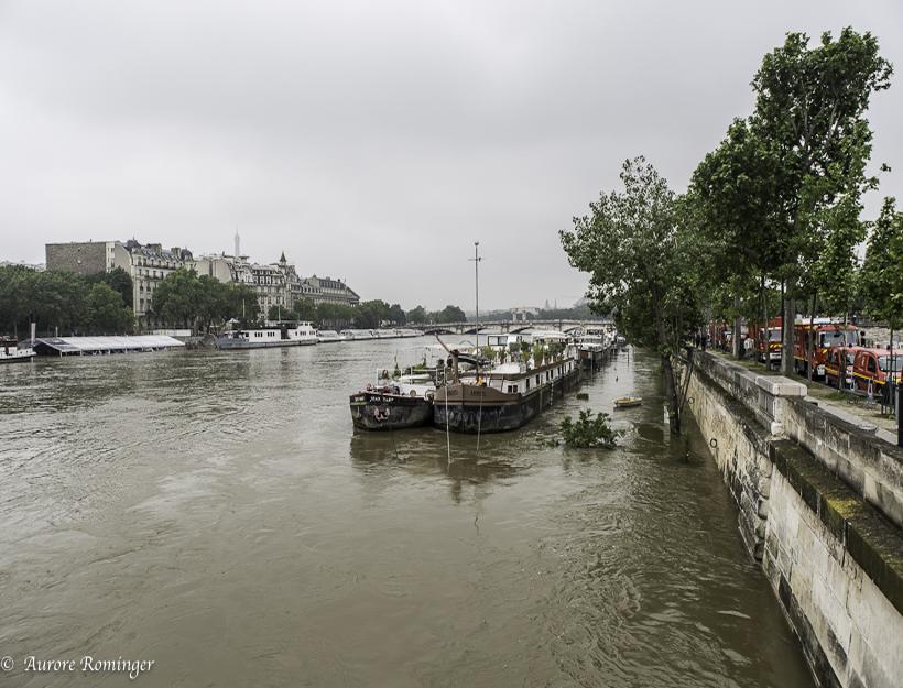 Rain in the Seine