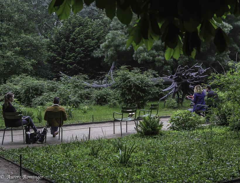 Jardin aux Tuileries