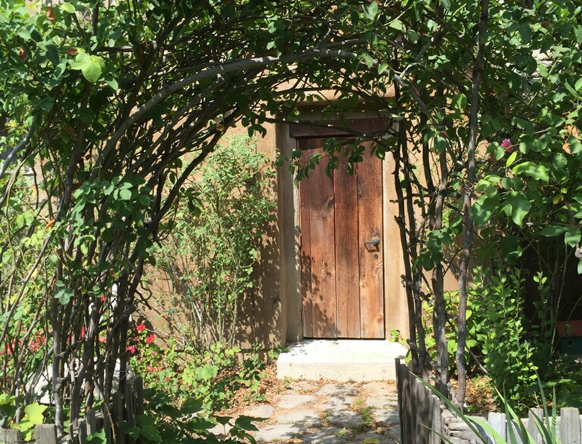 Discover Descanso Gardens – An Unexpected Urban Retreat in La Canada, CA