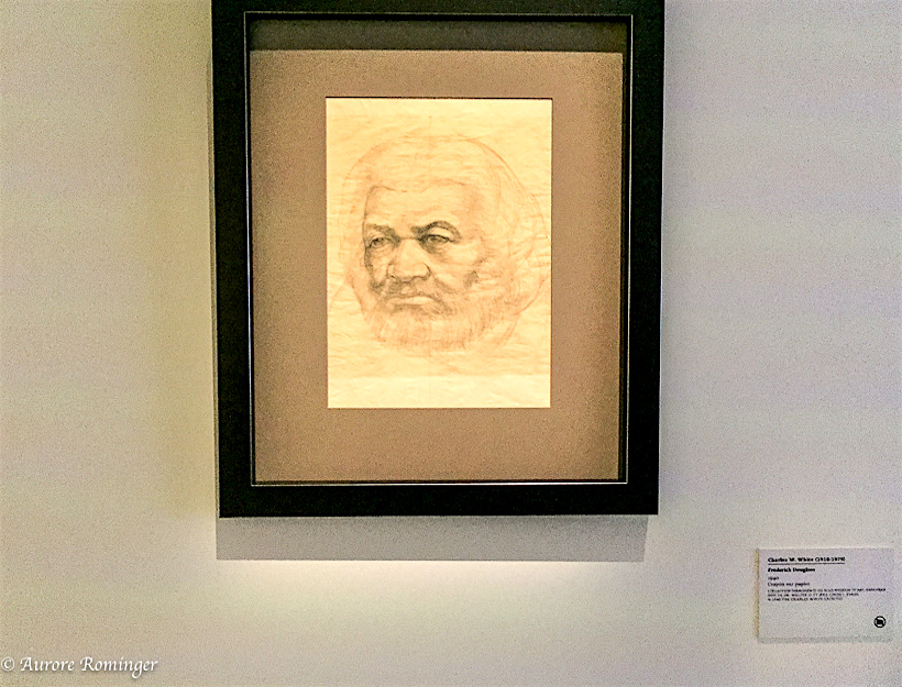 Frederick Douglass, instrumental in bringing attention to The Color Line