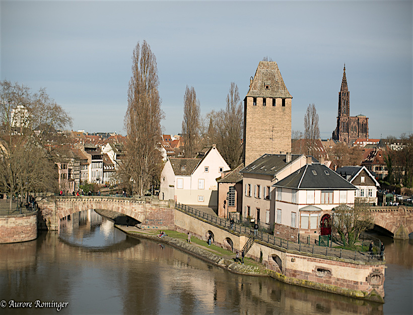 Strasbourg Houses the European Court of Human Rights and the International Institute of Human Rights