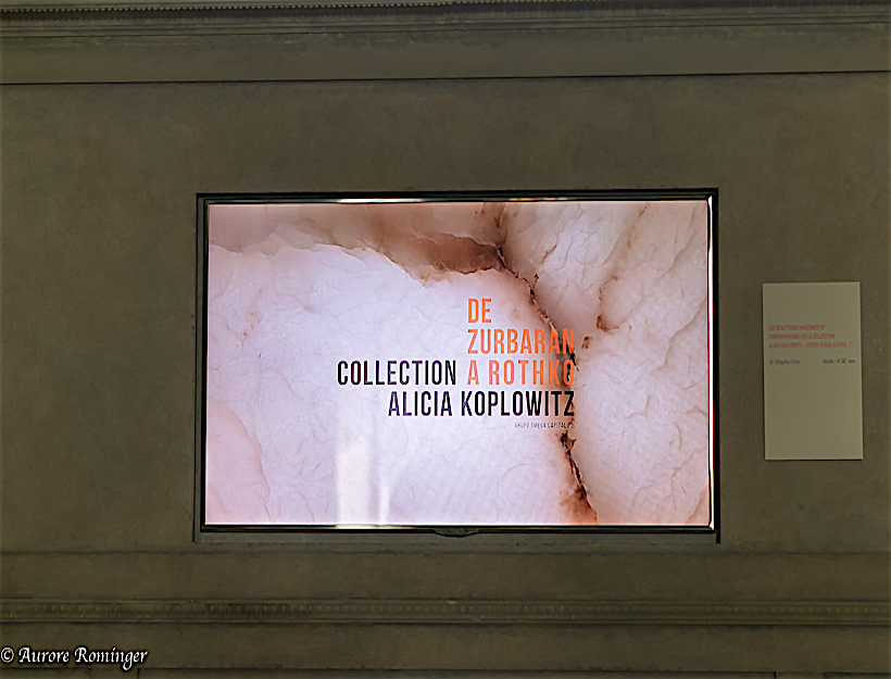 Video Introduction to the exposition