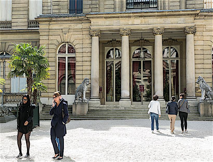 Garden facing the museum entry