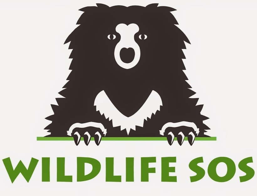 Help Wildlife SOS Save Animals and Encourage Sustainability in India