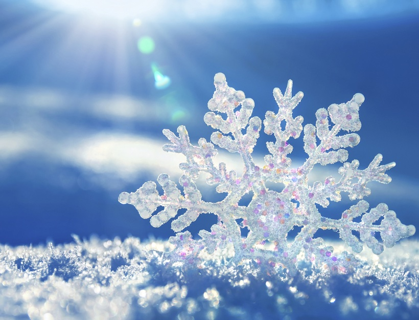 Winter's Hold – A Poem by Julie Clark