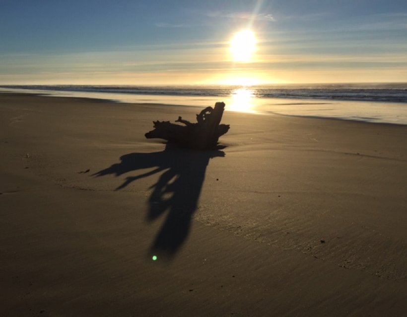 The Beauty & The Mystery of the Pacific Northwest Dunes