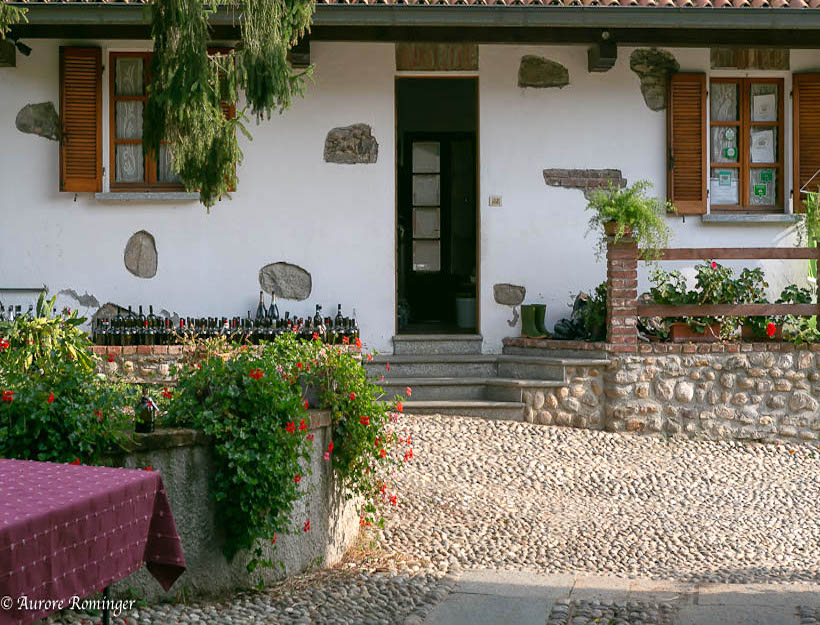 Ahhh… Italy, Trail Blazing – Discover Fontechiara Wines!