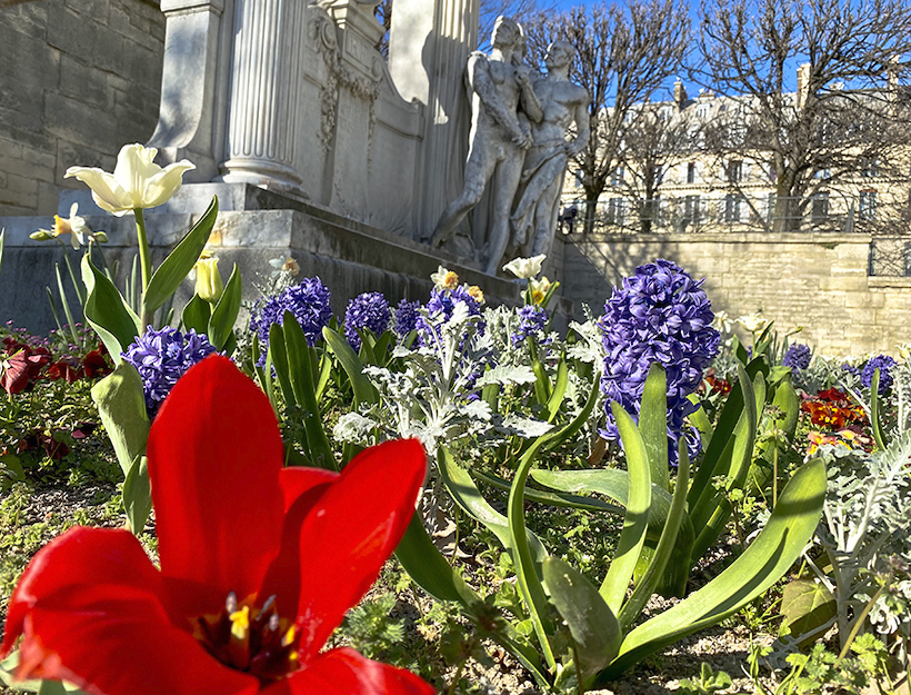 Flowers of spring for another perspective of the monument and background